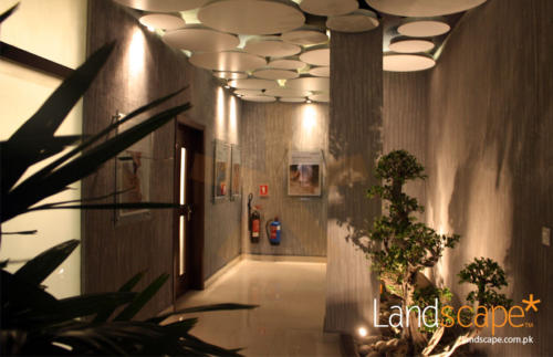 Another-View-of-the-Lobby-and-Corridor-showing-Ceiling-Landscaping-and-Textured-Walls