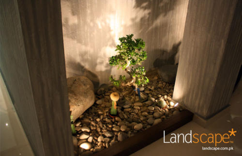 Dry-Landscaping-in-the-Lobby-with-a-Combination-of-Bonzai-Rocks-and-Pebbles