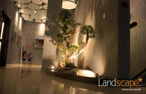 Tiled-Floor-Dry-Landscaping-in-the-Lobby
