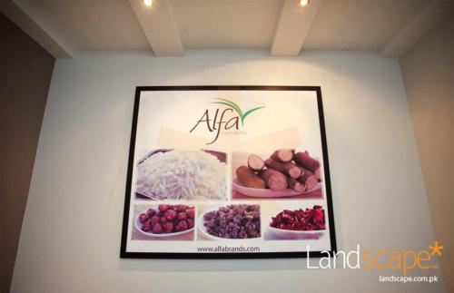 ALFA-brands-that-spell-originality