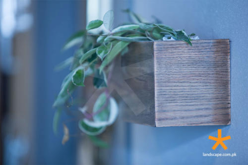 hand-made-plant-holder