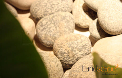 Pebbles-in-Dry-Landscaping